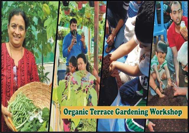 Workshop on Organic Terrace / Balcony Garden