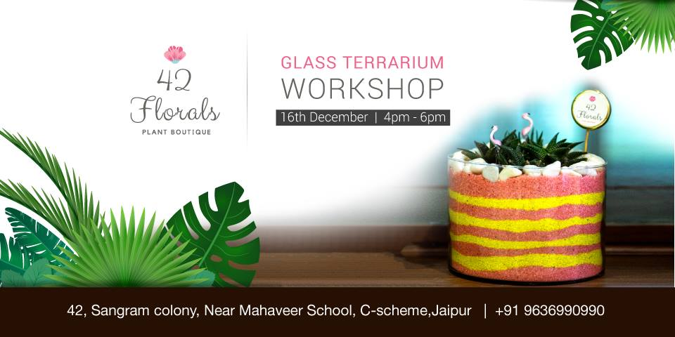 DIY Glass Terrarium Workshop