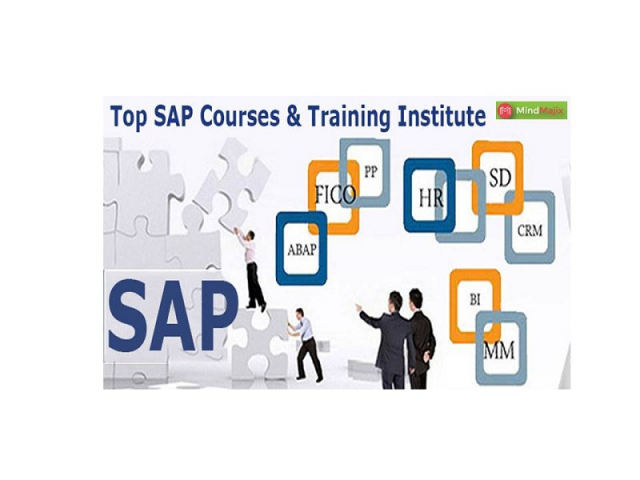 SAP GTS Training Designed By Industry Experts
