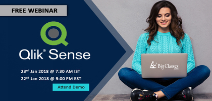 Master this Self Service BI Tool - Learn Qlik Sense