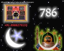 love problem solution rajswami +91-9988279155