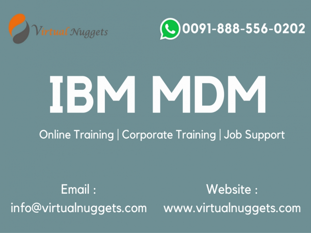 IBM MDM Training