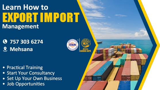 Start and Set up Your Own Import and Export Business At iiiem  Mehsana