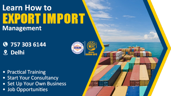 Start and Setup Your Own Import and Export Business Delhi