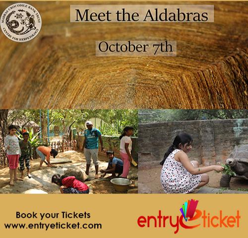 Meet the Aldabras | Entryeticket