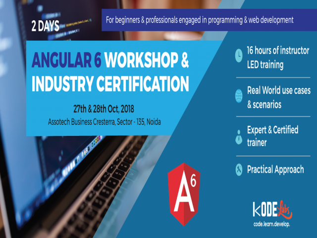 Angular 6 Programming Professional Training & Certification