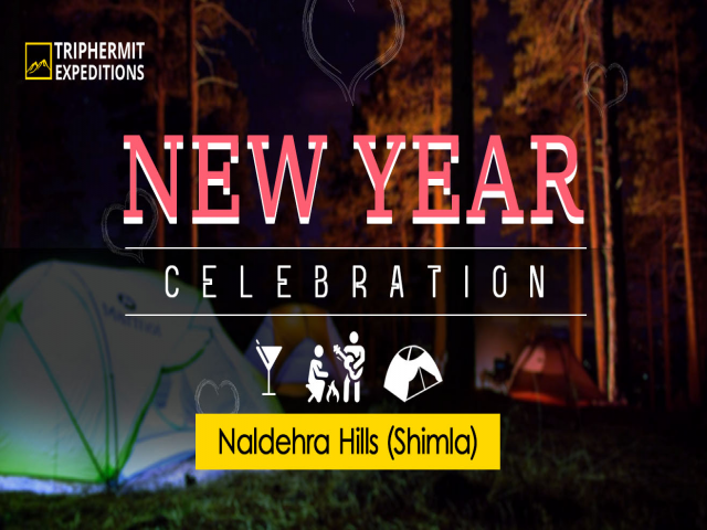 New Year Party In the lap of the Himalayas