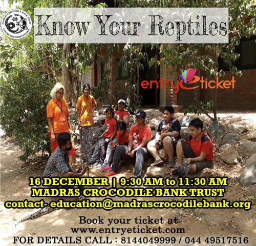 Know Your reptiles | Entryeticket