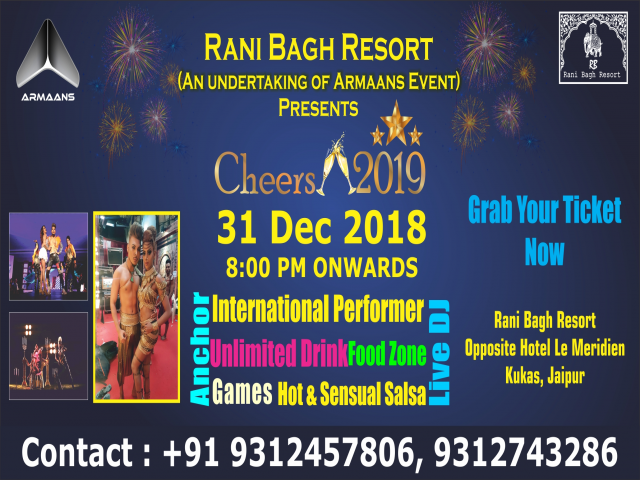 new year party cheers 2019