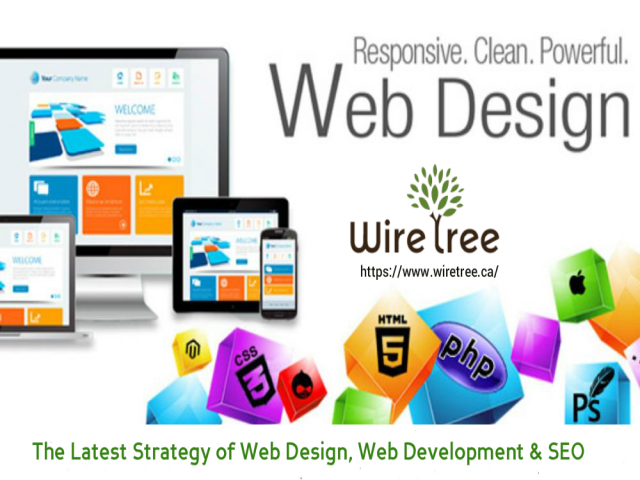 Latest Strategy of Web Design and Web Development