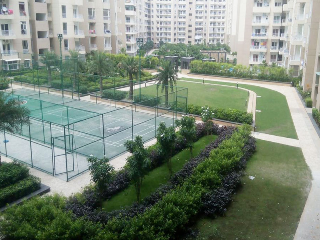Aggrandize your living standard with Ajnara Daffodil Noida
