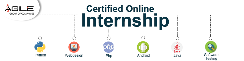 Certified Online Internship at Agile Academy