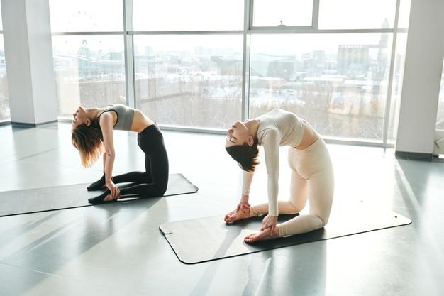 100 hour yoga teacher training in rishikesh-7 chakras Yoga School