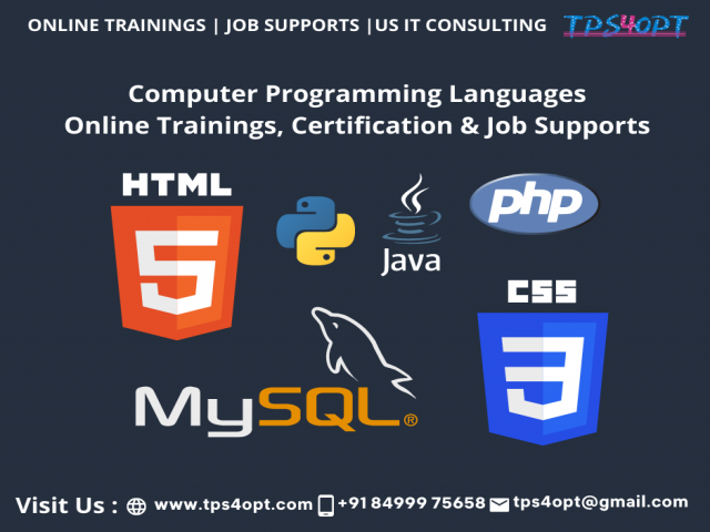 Computer programming languages Online Training - TPS4OPT