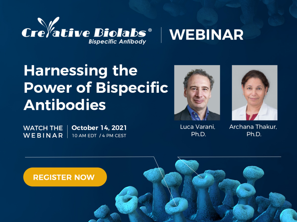 Webinar: Harnessing the Power of Bispecific Antibodies